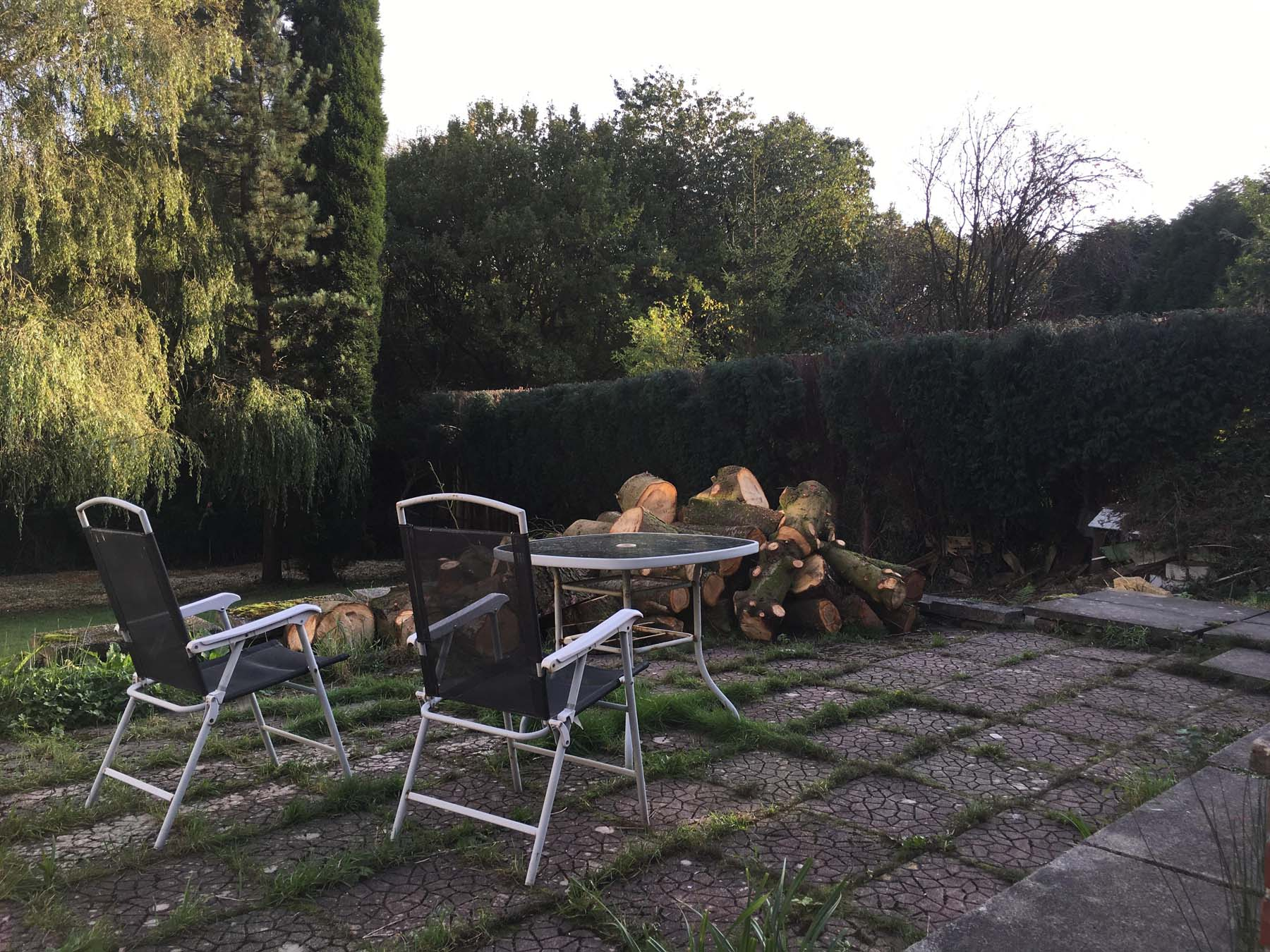 Hedge Reduction Service 2