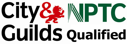 NPTC-tree-surgeon-city-and-guilds-qualified