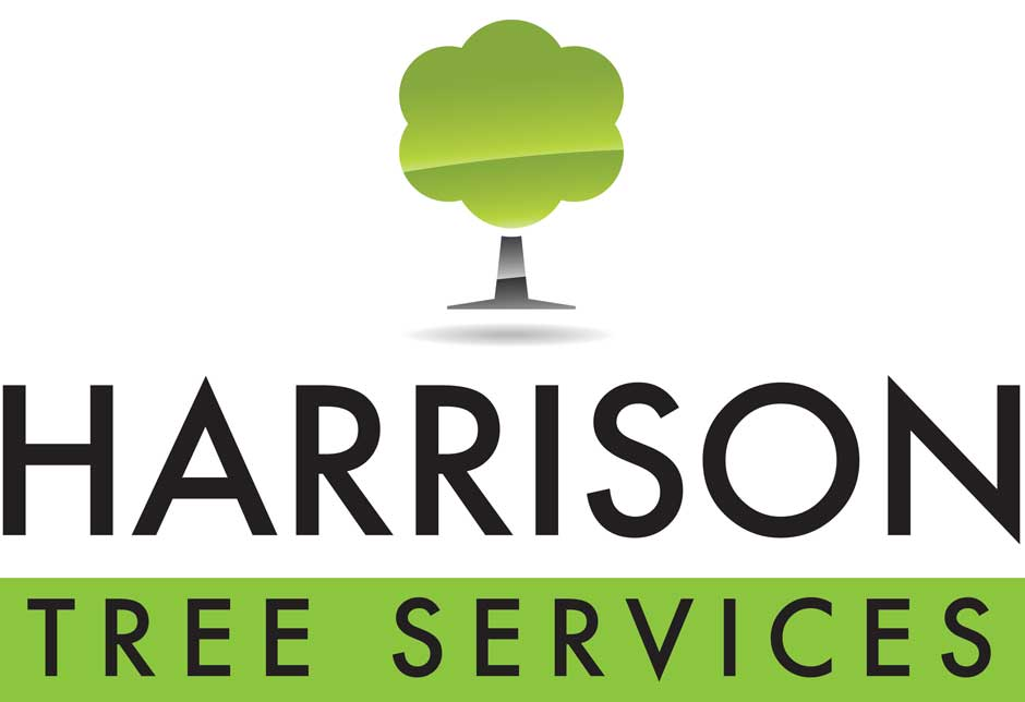 Warrington Tree Surgeon